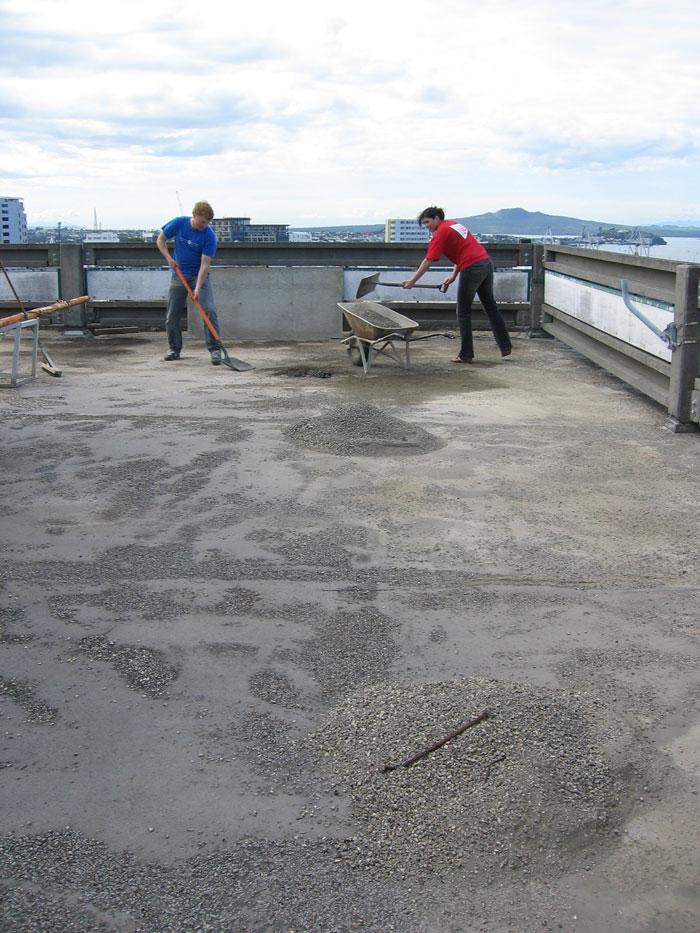 NZ Green Roof installation team