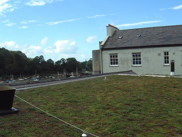 Green roof Caenarfon
