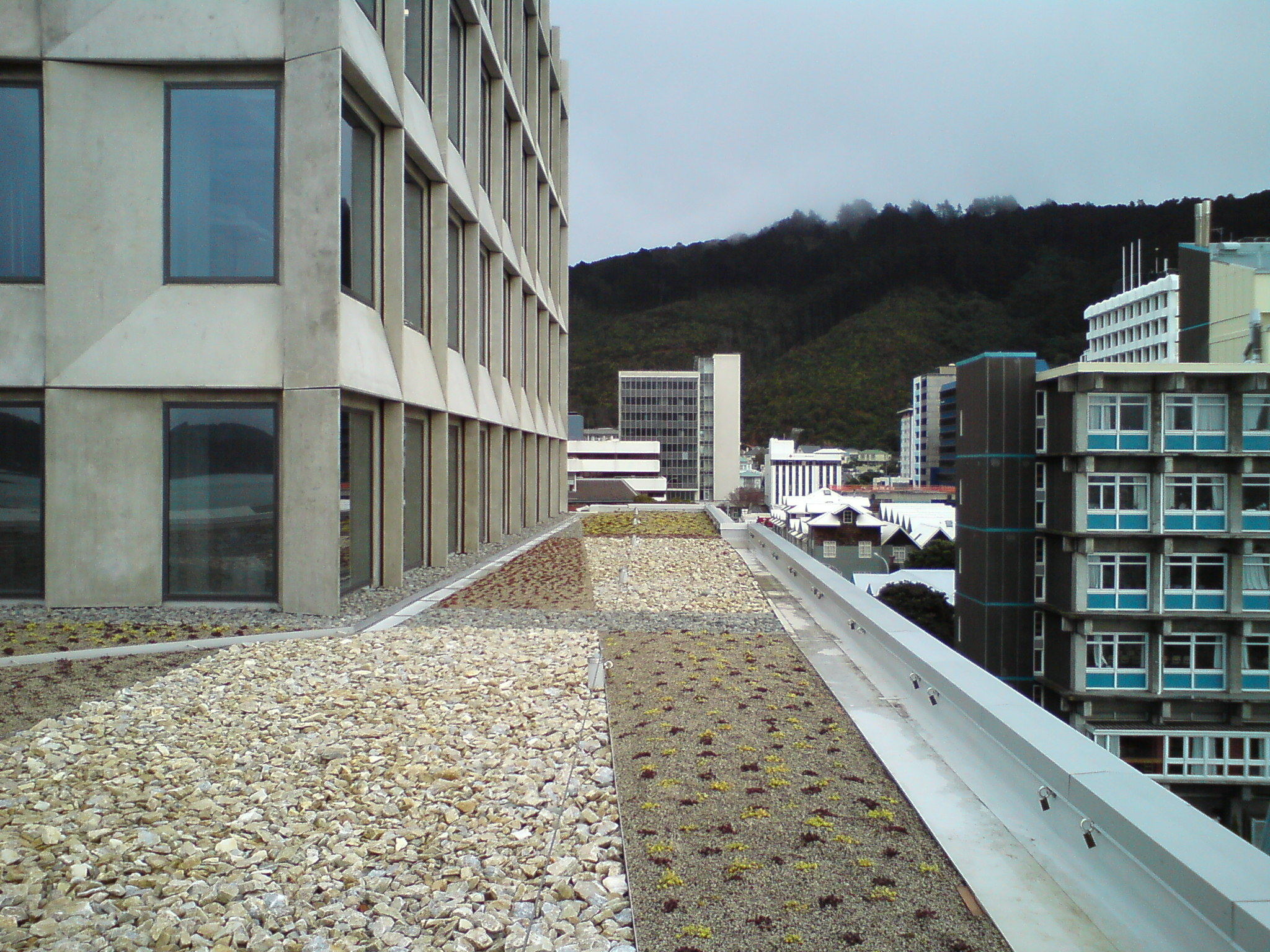 finished the green roof at the University