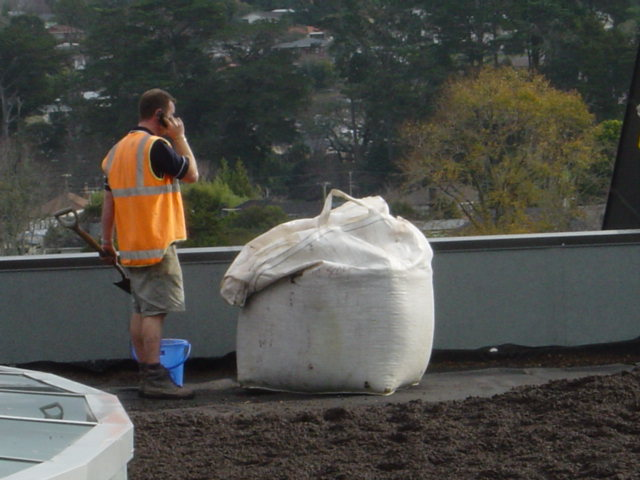 Preparing University green roof