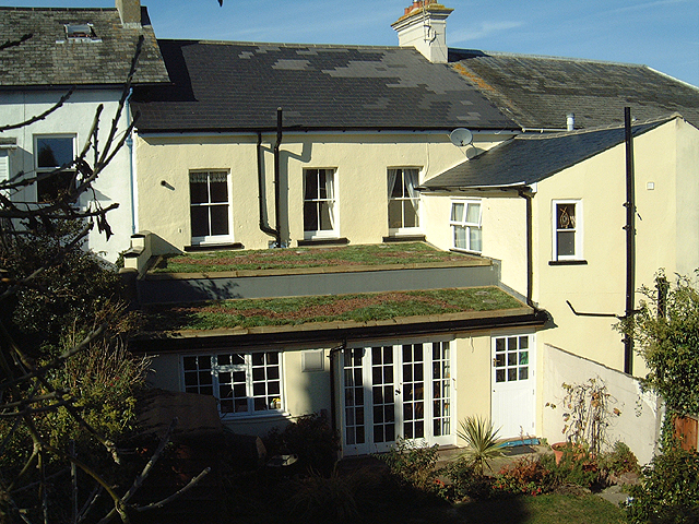 Overseas Examples Green Roof