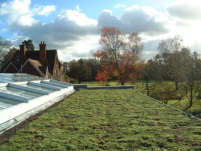 Living roof Hampshire - Nature Mat