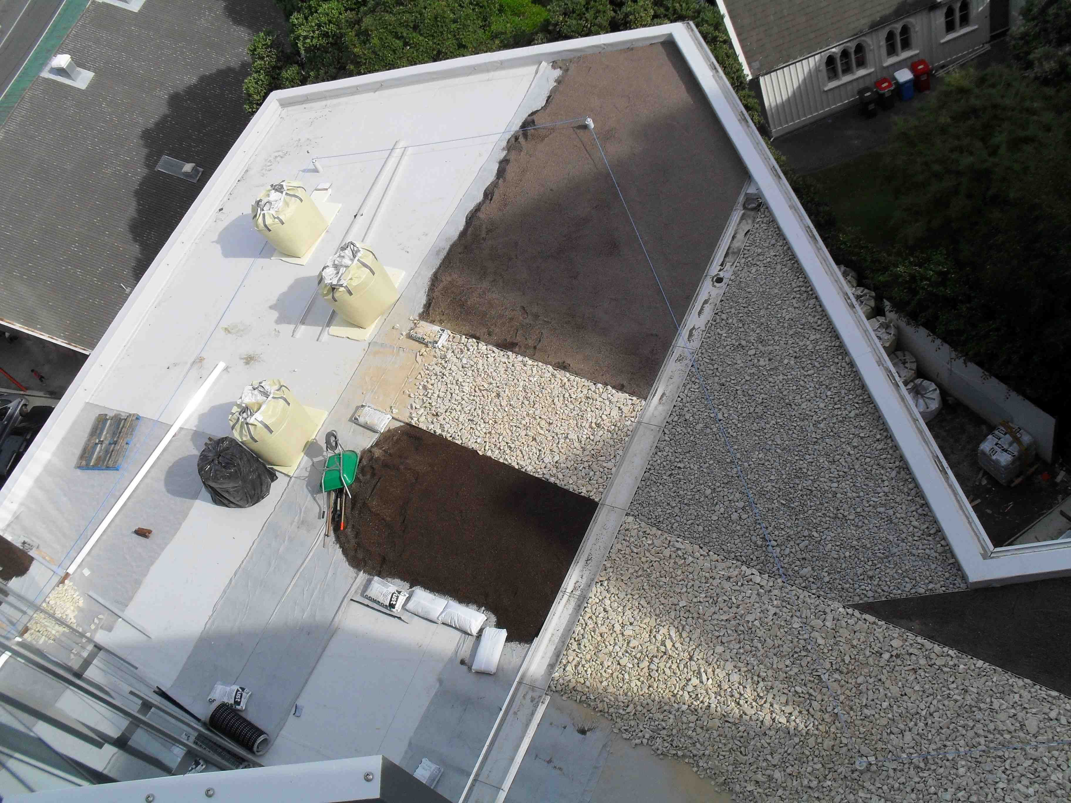 Living roof at NZI from level 9