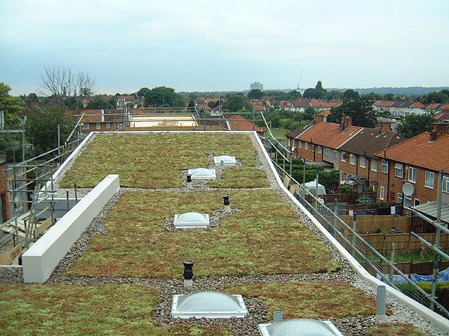 Living roof London
