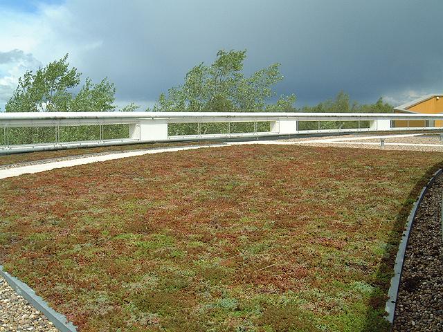 green roof Milton Keynes