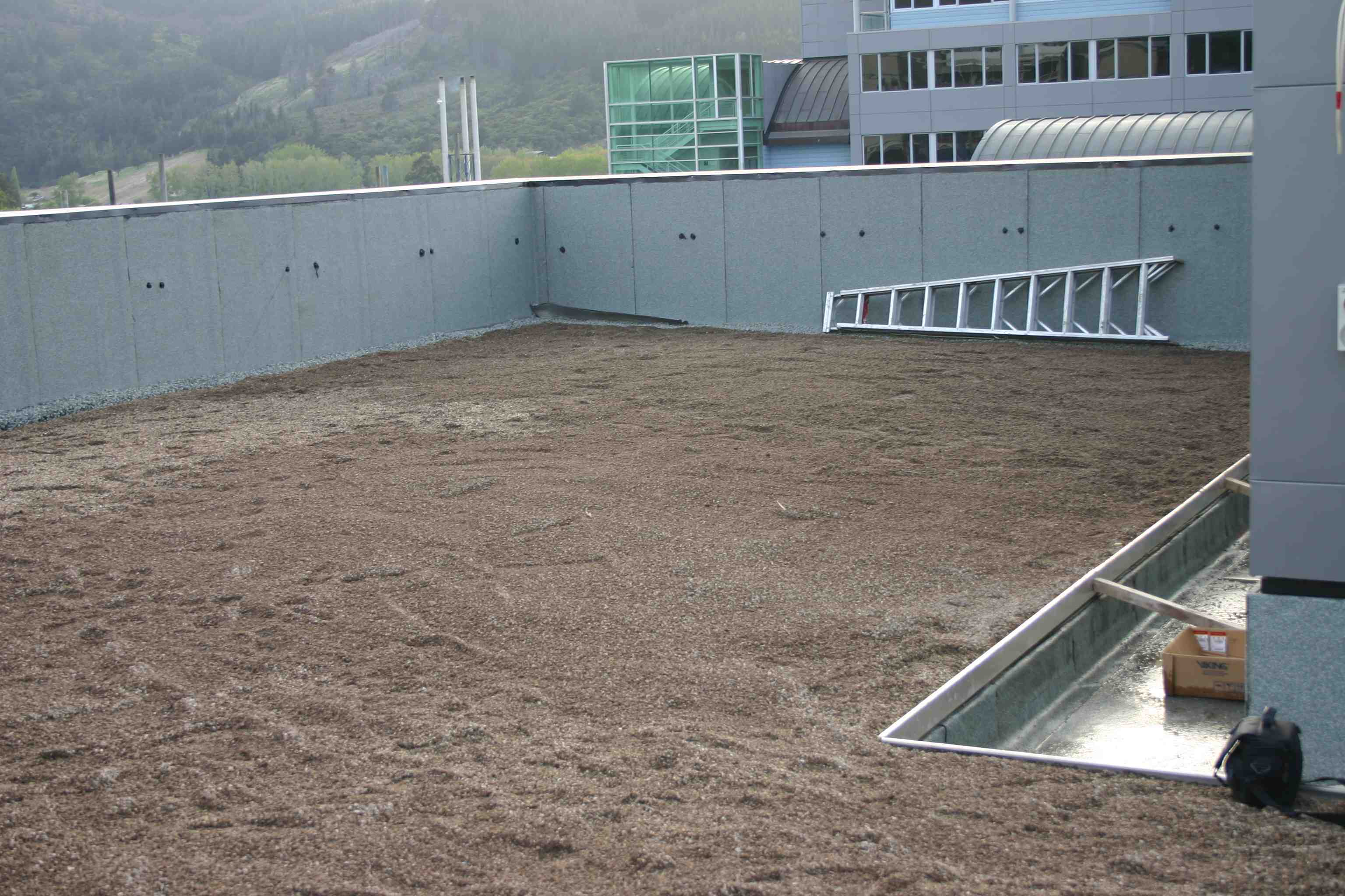 Green roof installation at Otago University