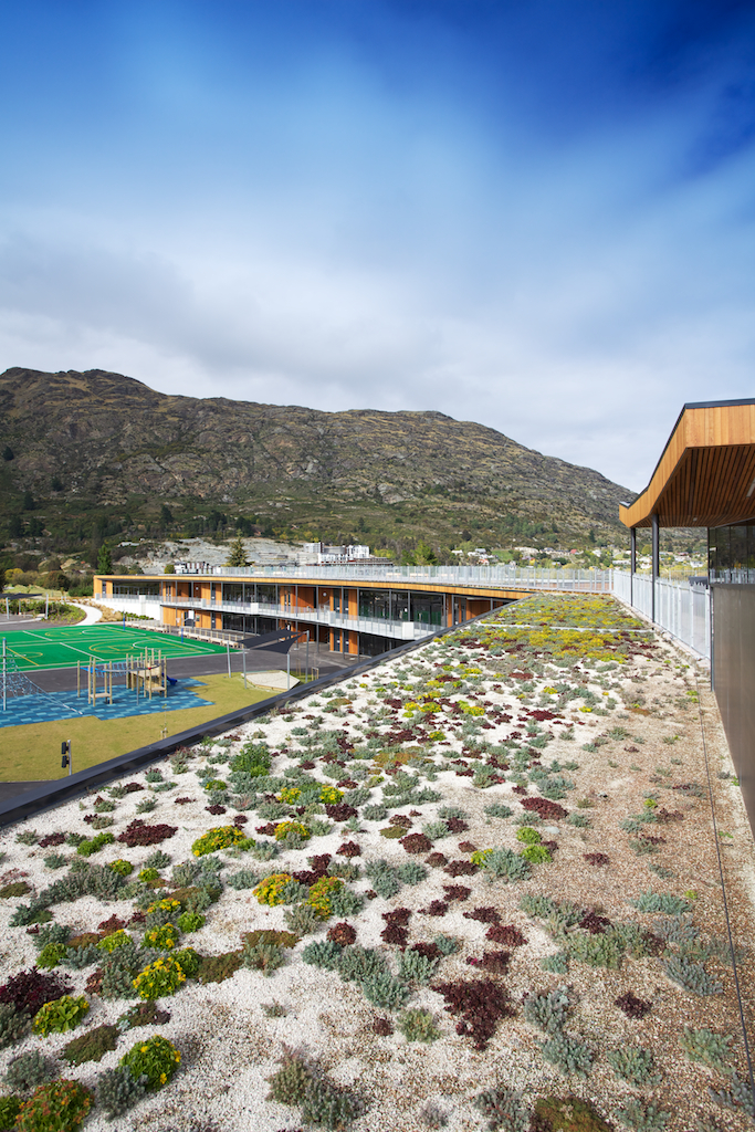 Living roof in the remarkables