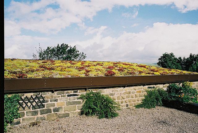 Green roof SaddleworthMoor