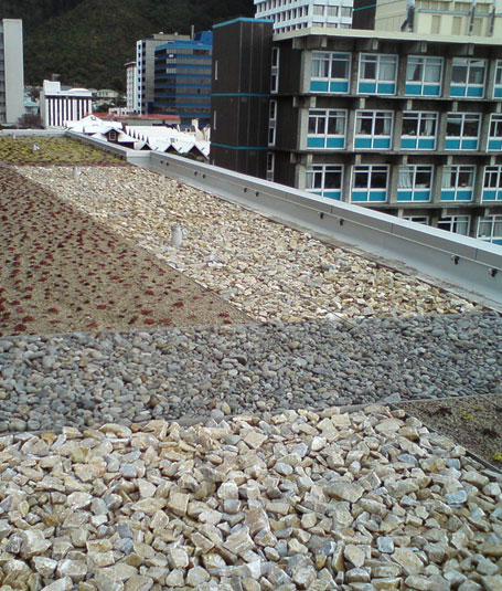 Green roofs offer stormwater management solutions