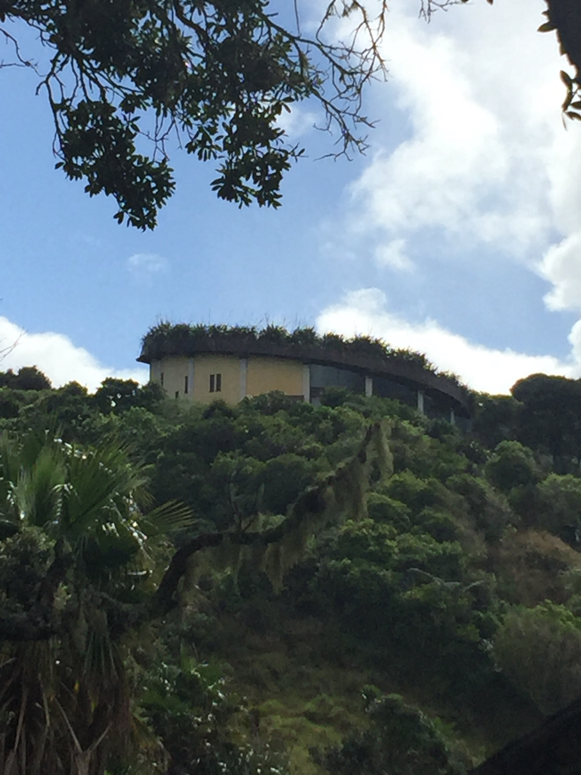 Green roof hides building on the hill