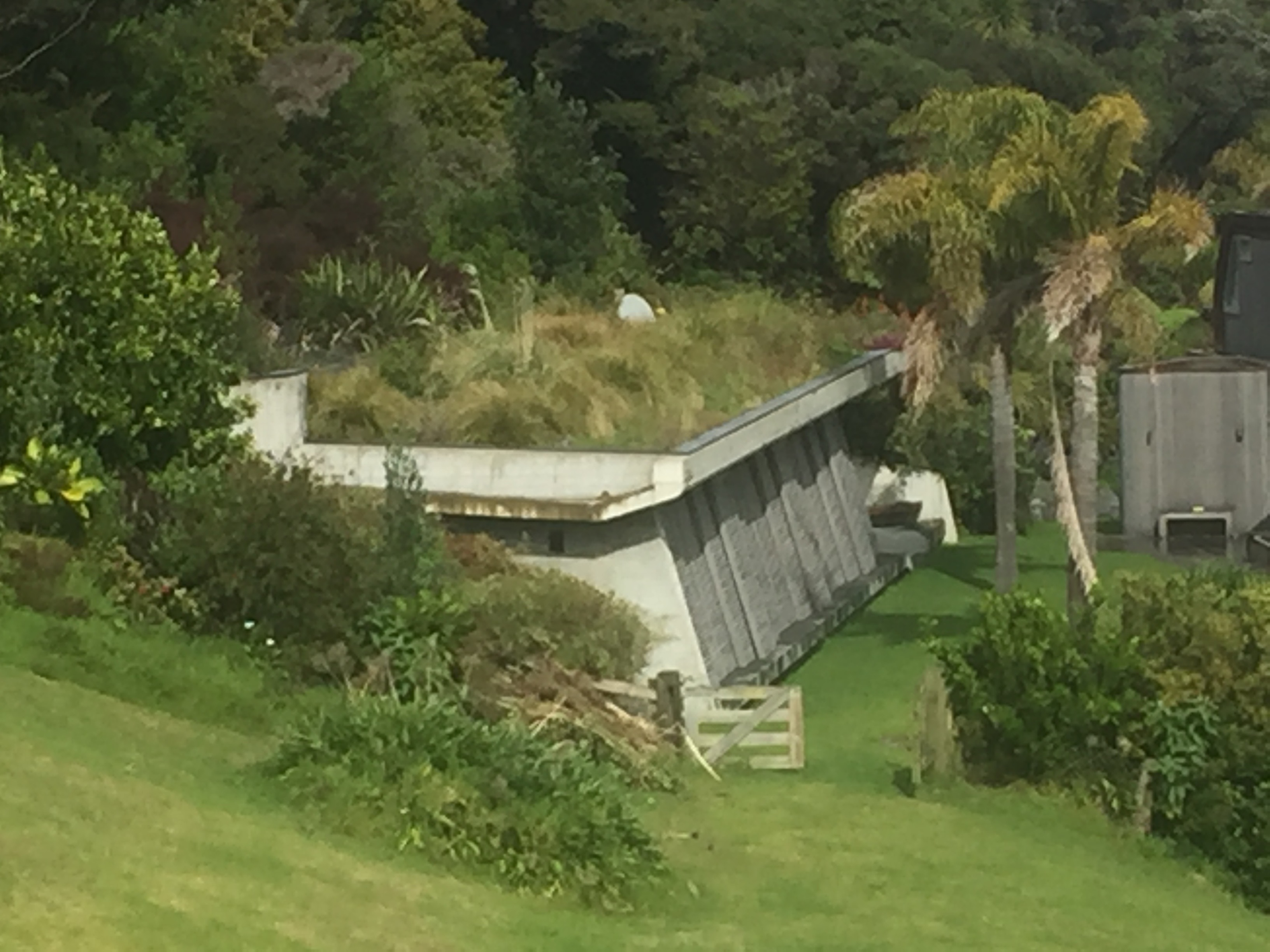 Lush green roof at the Bay of Islands