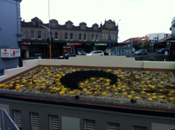 Green roof on KingslandToilets