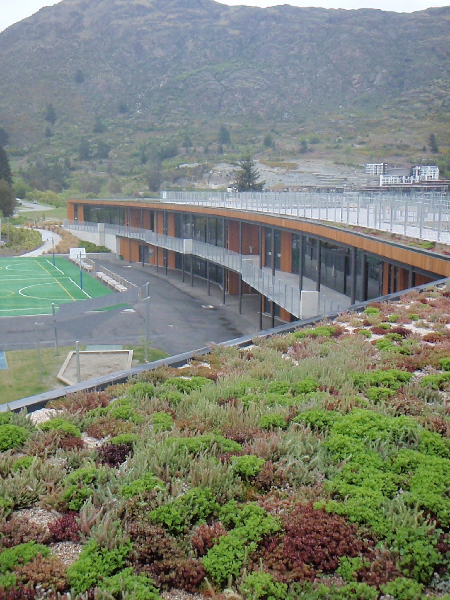 Green roof growth at Remarkables Primary School