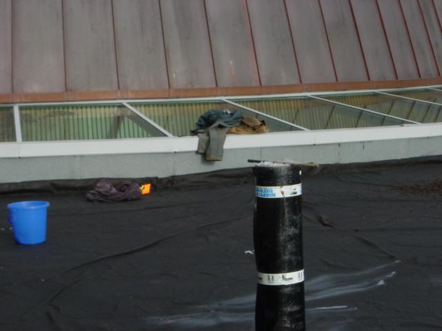 Green Roof Henderson