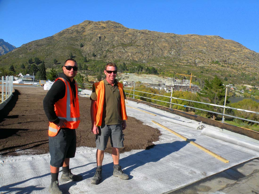 Greenroof team installing a new green roof at the Remarkables Primary School