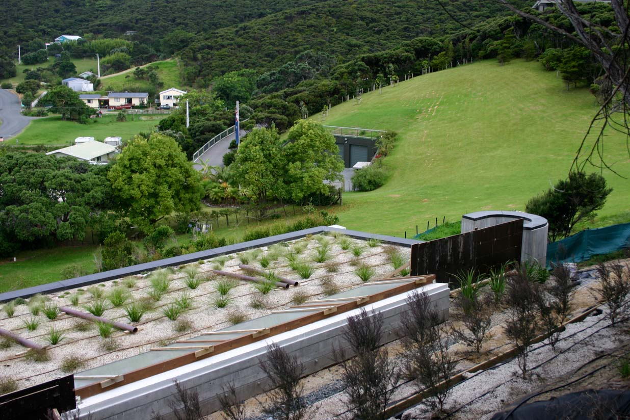 On top of Bay of Islands Green Roof