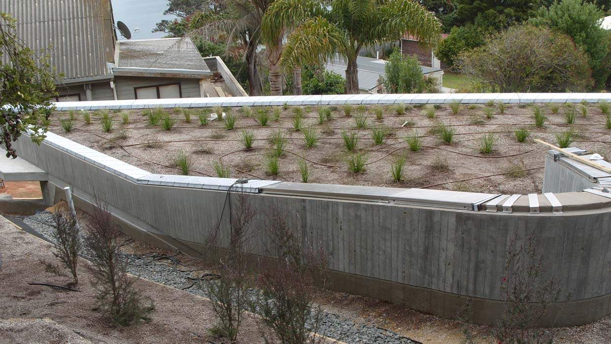 Green Roof on Bay of Islands Batch