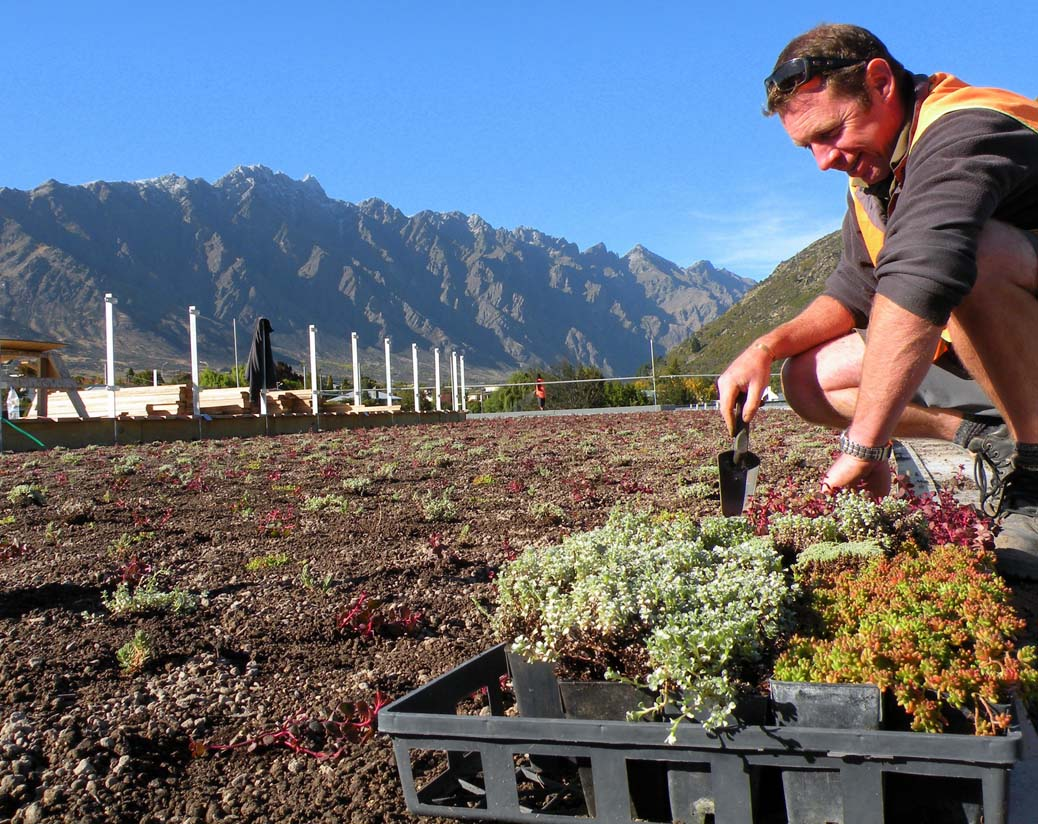 installing a new Green roof on the Remarkables Primary School