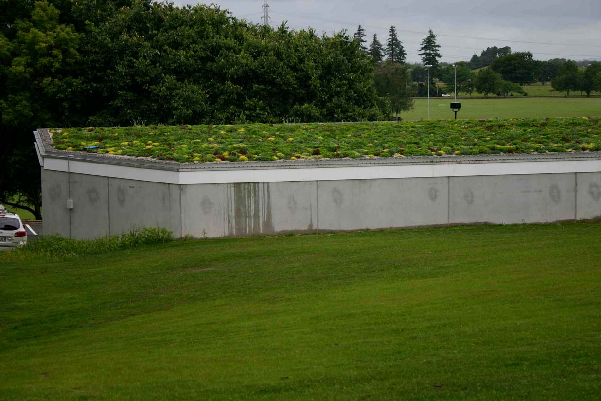 Distant view of the green roof at the University of Waikato