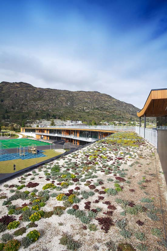 Green roof on the Remarkables Primary School