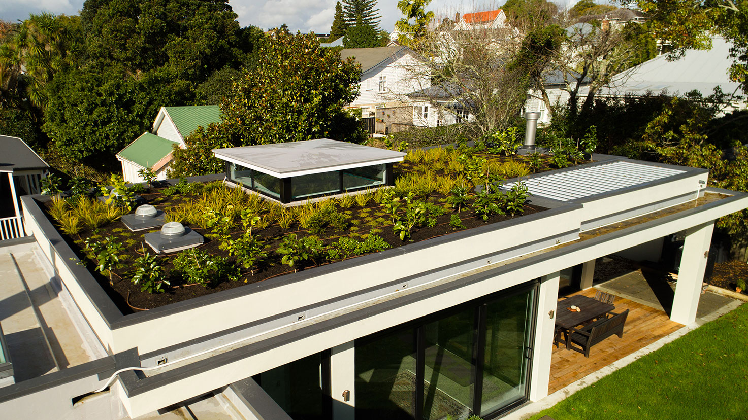 Green roof in Mount Eden